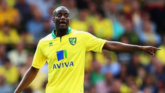 Sebastien Bassong has been a revelation for Norwich since signing this summer