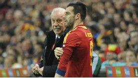 Alvaro Negredo has failed to fully win over Spain boss Vicente Del Bosque