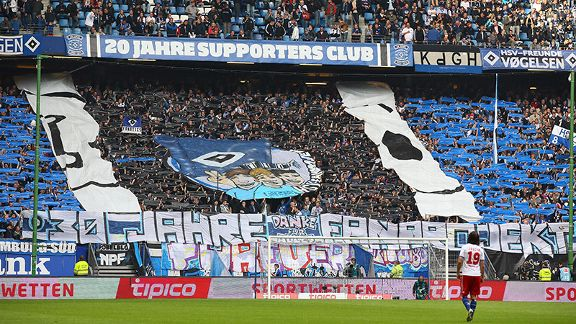 Supporters of HSV demonstrate their passion for the cause.