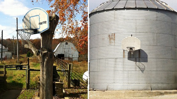 Hoop on Tree/Silo