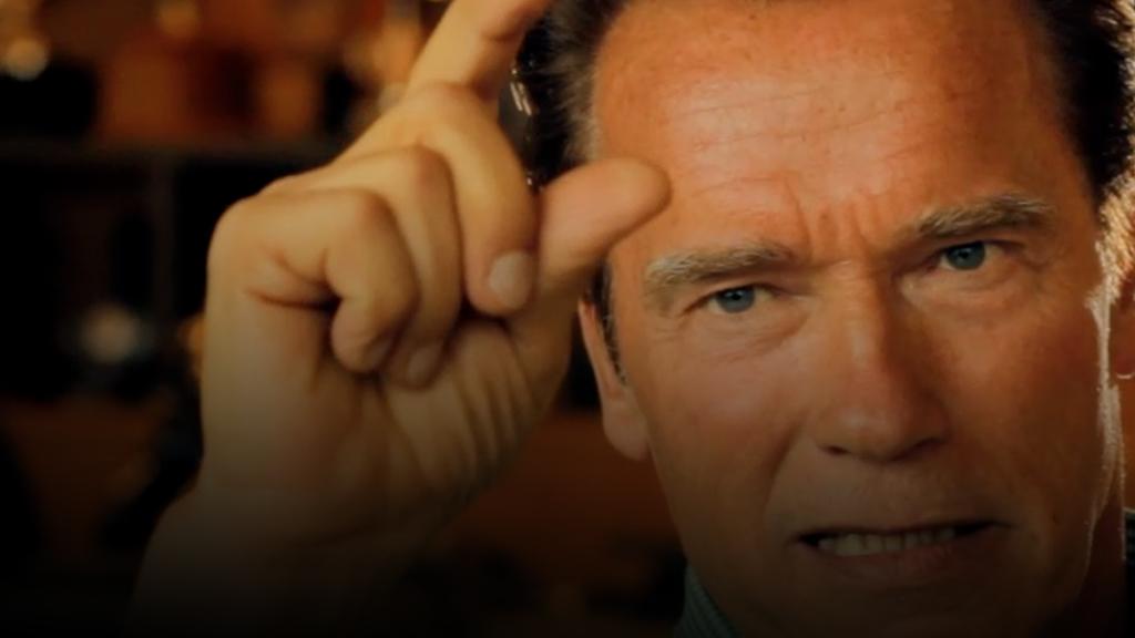 Arnold Schwarzenegger Austrian Army