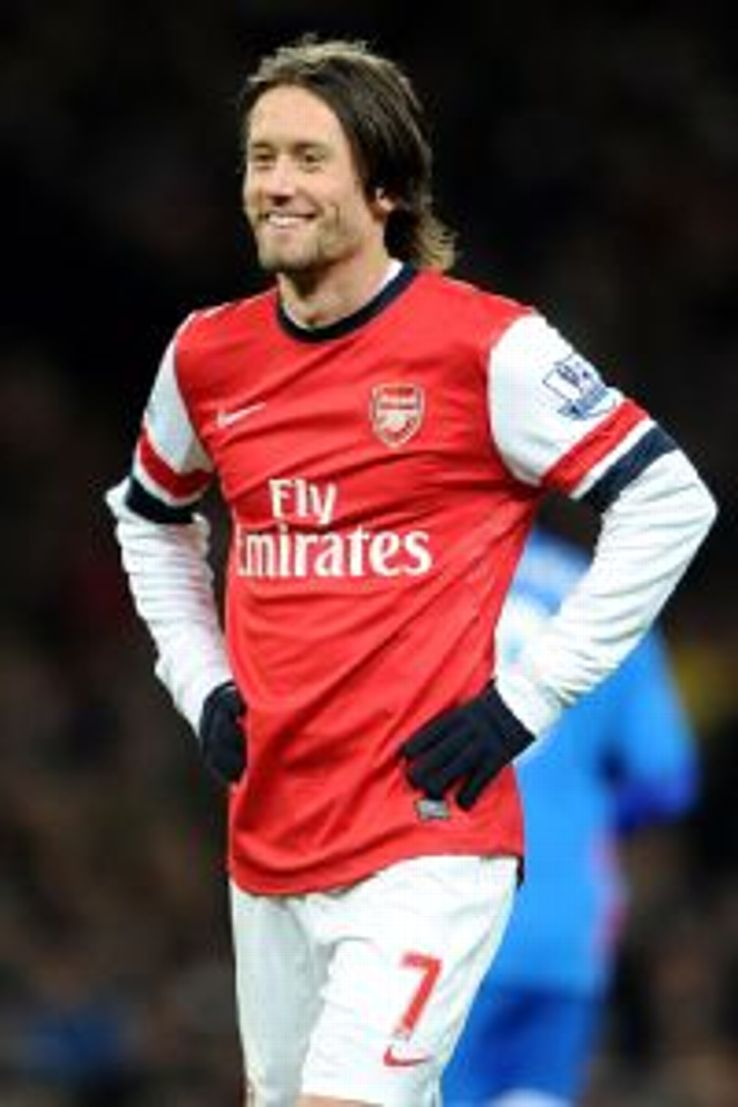The scout believes Mikkel Diskerud's game is very similar to that of Arsenal's Tomas Rosicky.