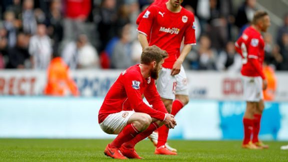 Cardiff City's stay in the Premier League is over after Saturday's loss at Newcastle.