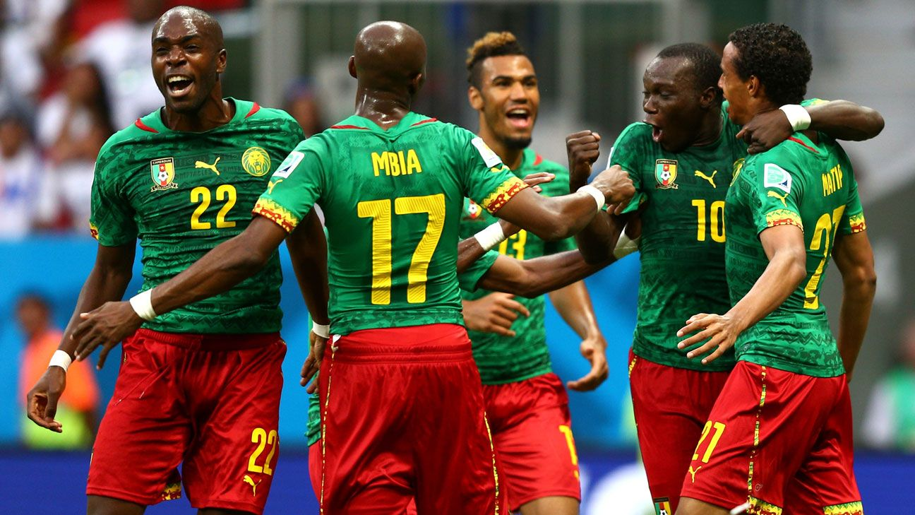 Image result for Cameroon football national team 2016