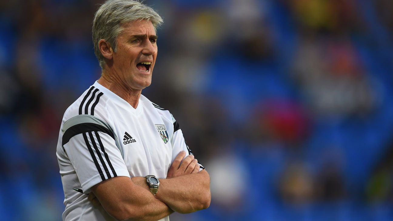 Our experts believe Alan Irvine and West Brom will not survive the Premier League this season.
