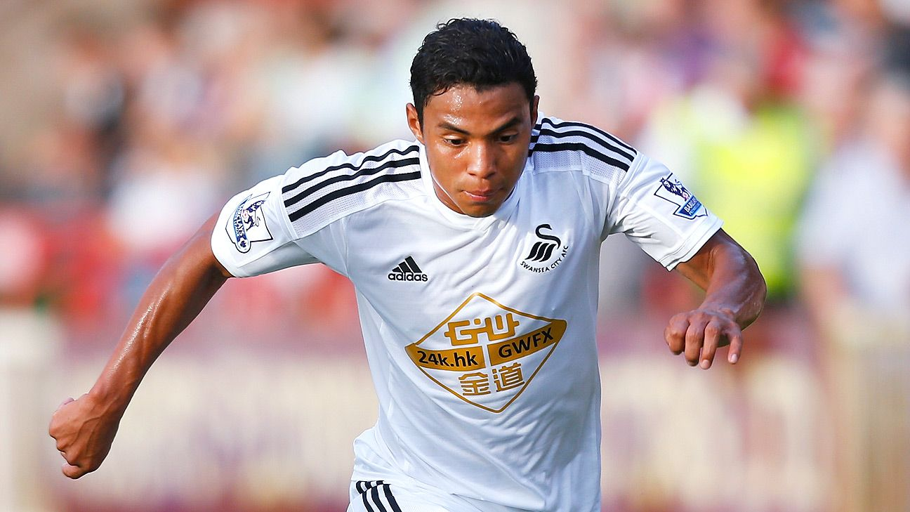 Speedy winger Jefferson Montero will provide more width for the Swansea attack in 2014-15.