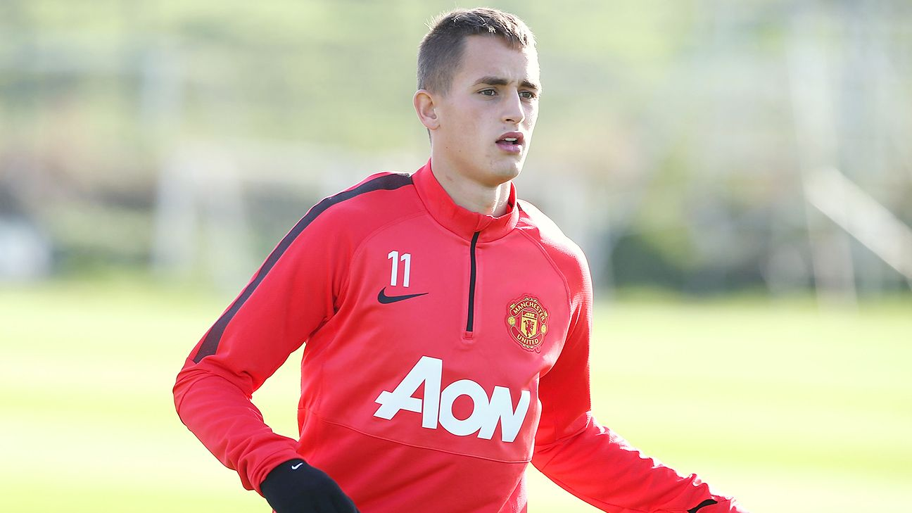 Adnan Januzaj has made just five appearances this season in the Premier League.
