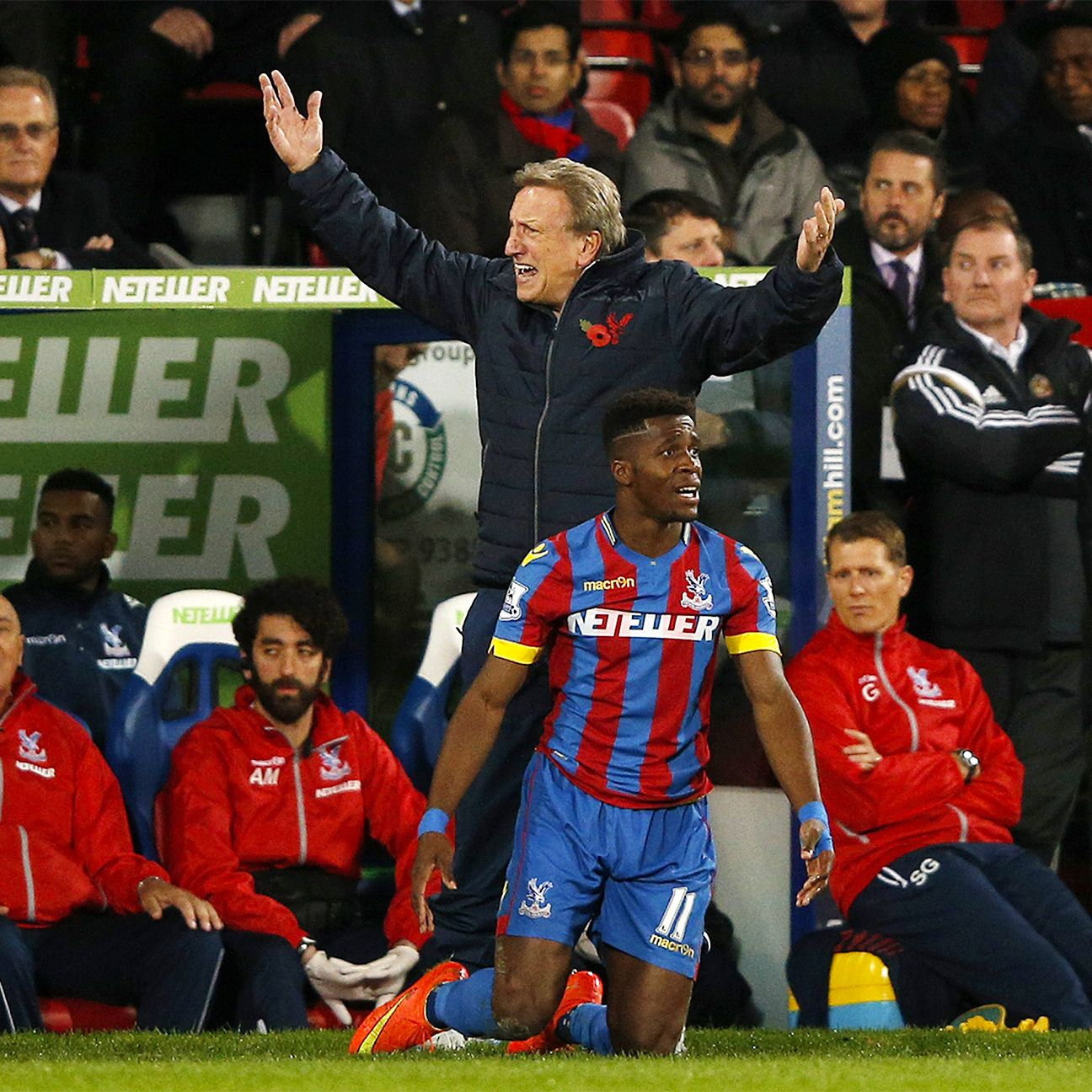 There is plenty of angst being felt at Crystal Palace following Monday's home defeat to Sunderland.