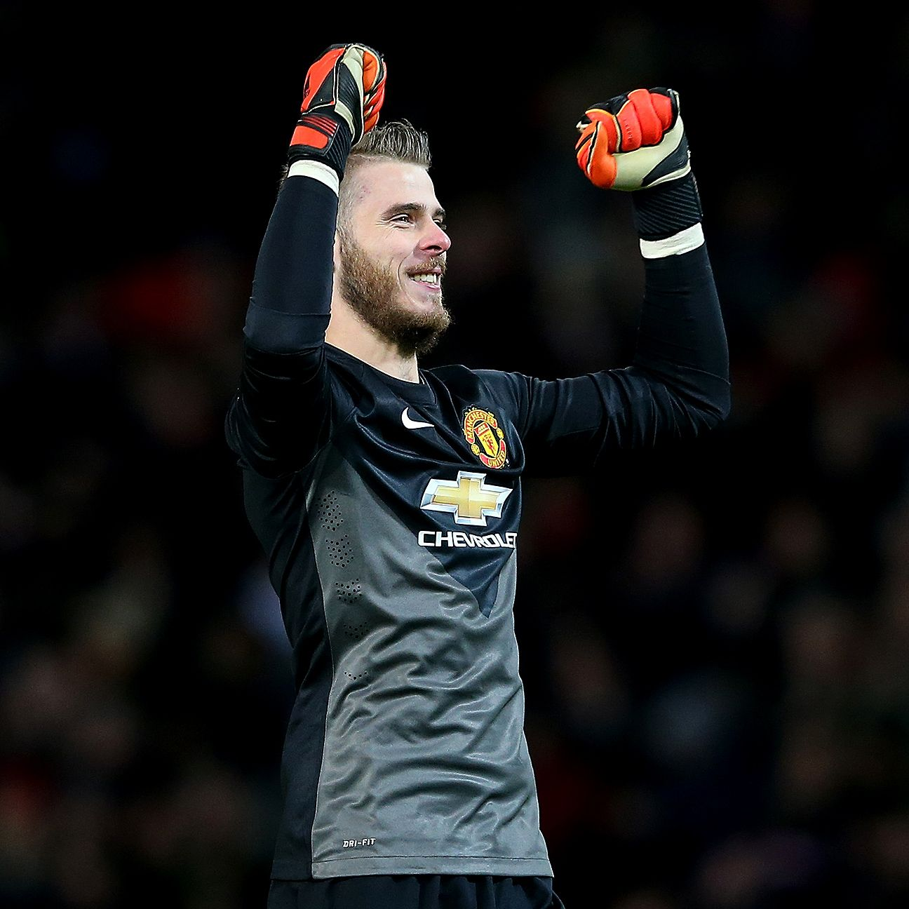 At times this season, goalkeeper David De Gea was the difference between victory and defeat for Manchester United.