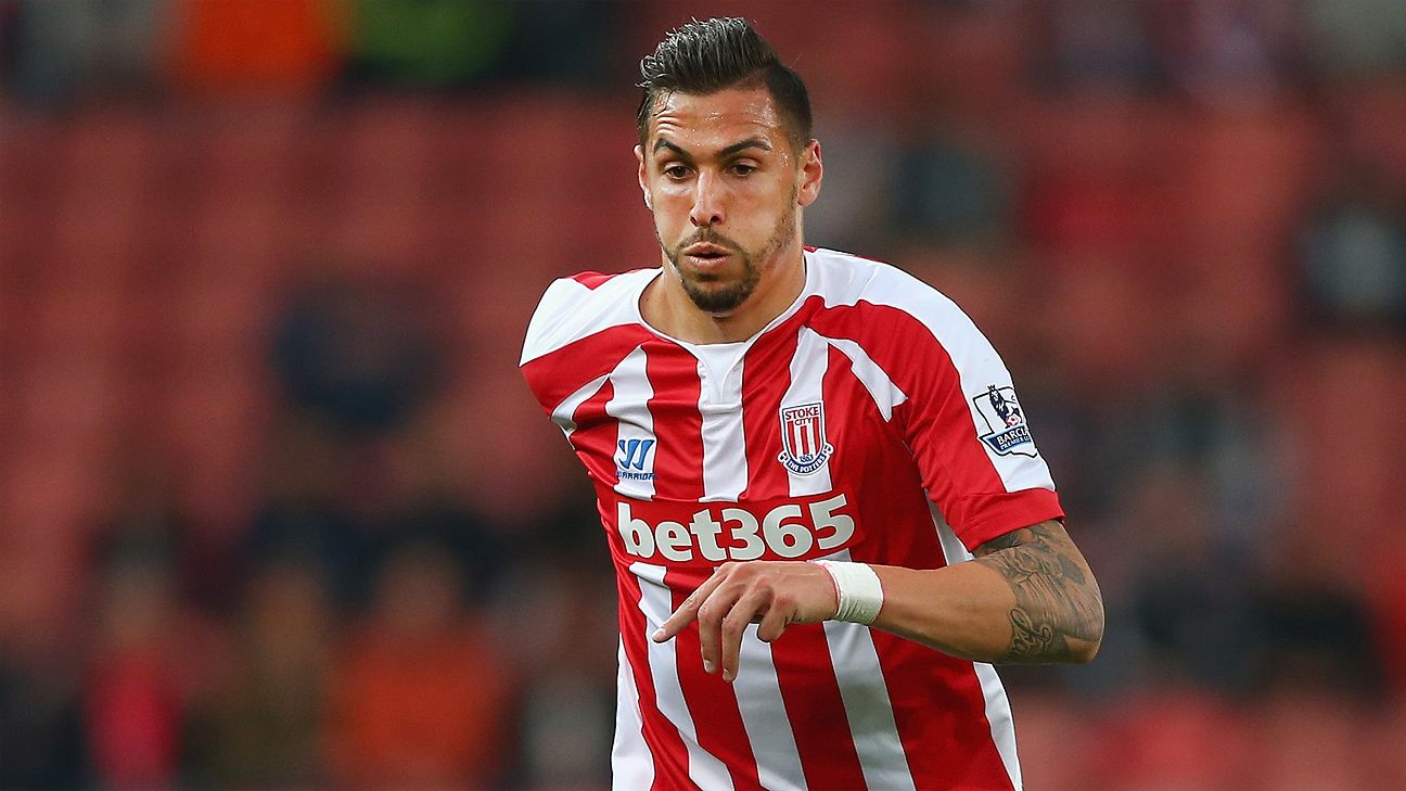 Geoff Cameron has enjoyed success this season playing in the middle of the pitch for Stoke.