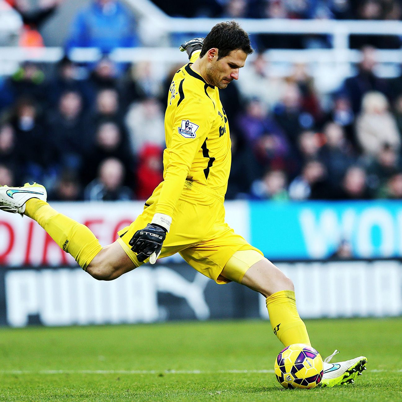 Stoke goalkeeper Asmir Begovic could be lured away this summer by one of Europe's top clubs.