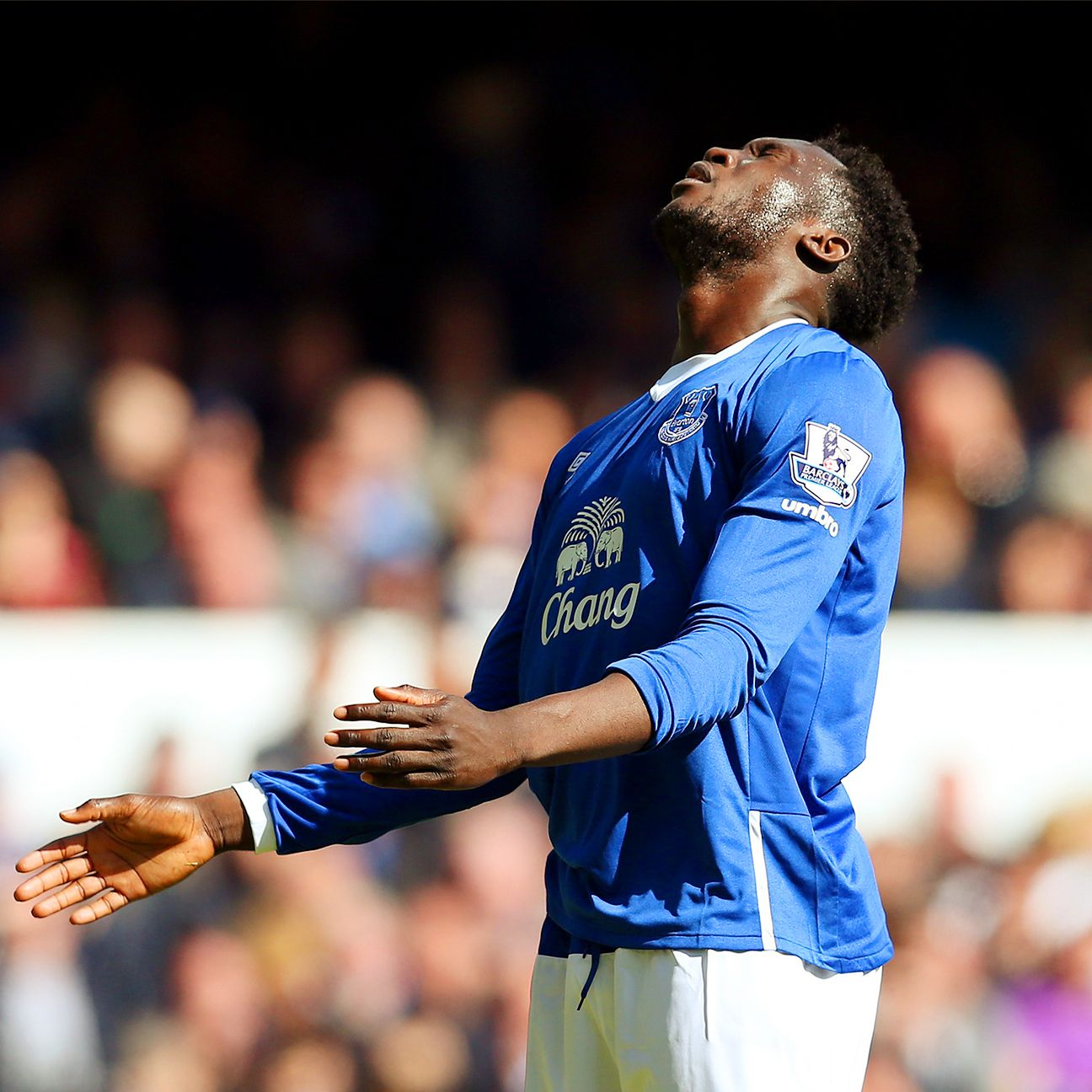 2014-15 was largely a season to forget for Romelu Lukaku and Everton.