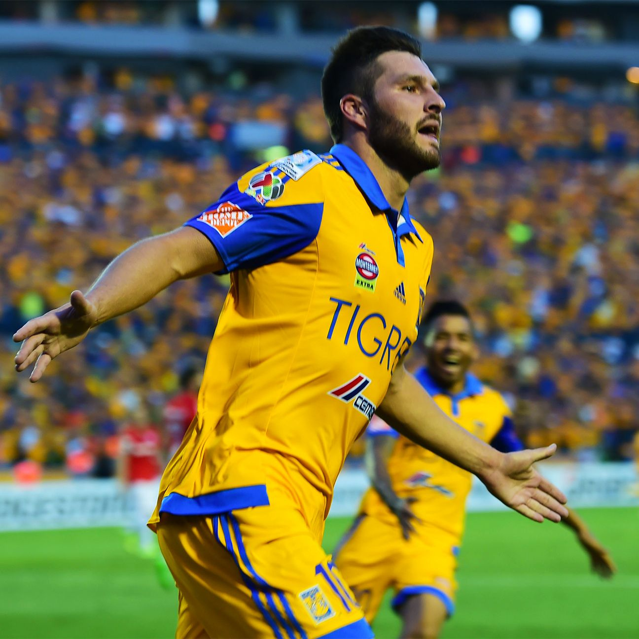 After a stellar first season in Liga MX, forward Andre-Pierre Gignac returns for Tigres who are seeking back-to-back championships.