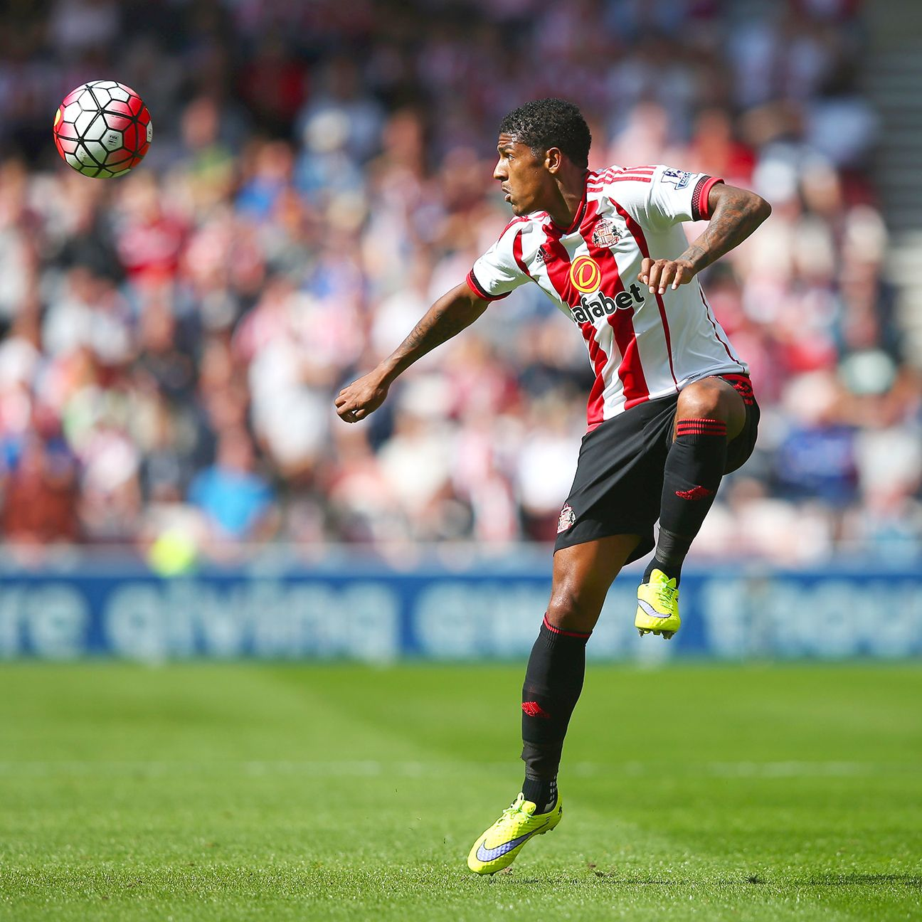 Patrick van Aanholt and the Sunderland defence must step up against Spurs.