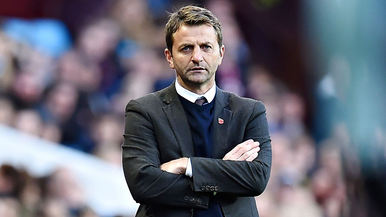 Image result for tim sherwood espn