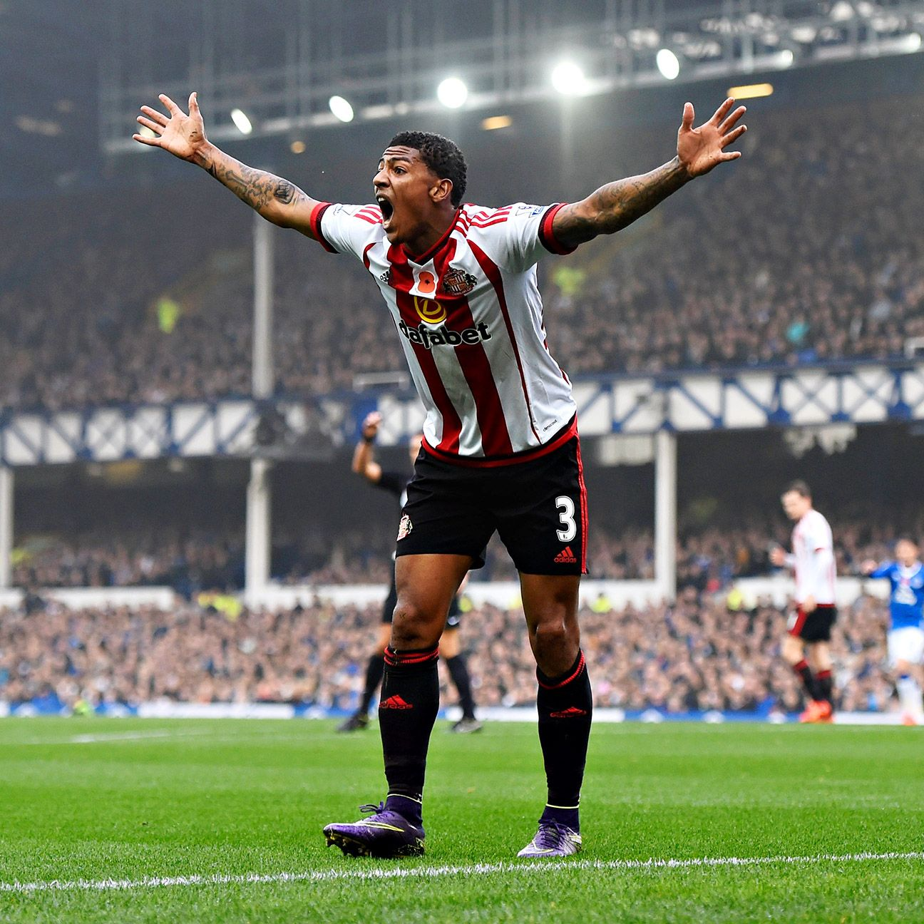 Patrick van Aanholt and the Sunderland defence had an afternoon to forget against Everton.