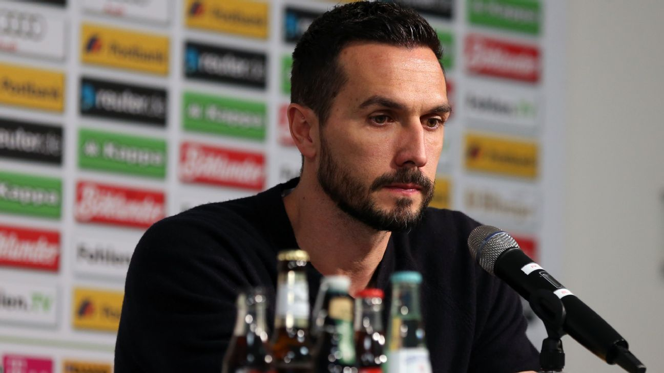 Martin Stranzl, of Monchengladbach, announces his retirement