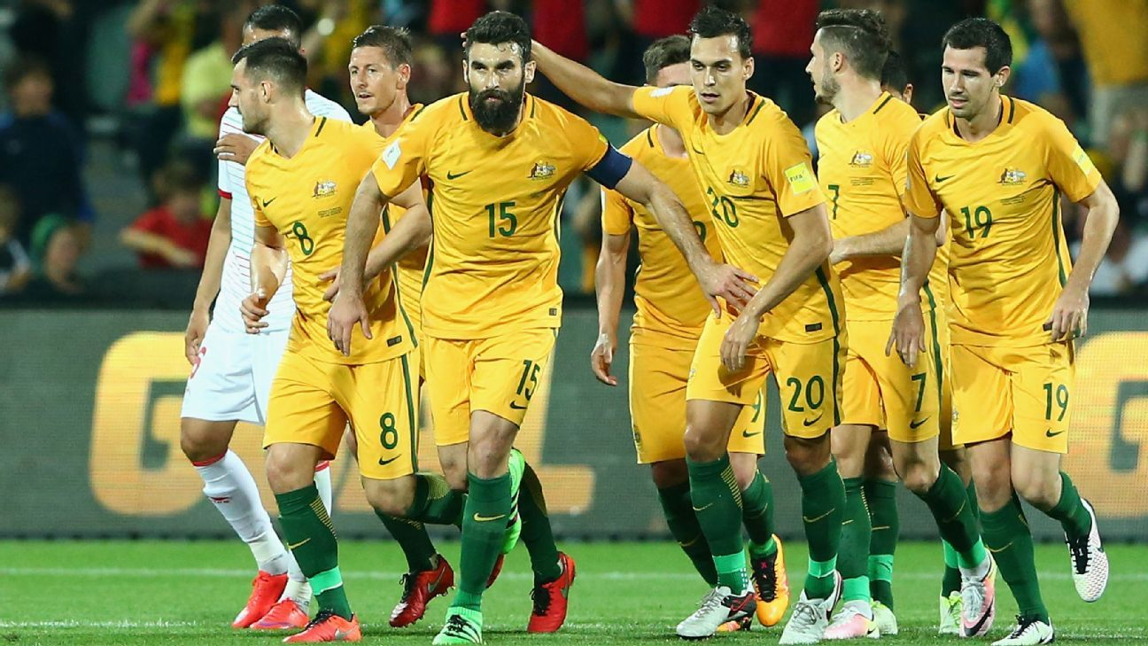 Australia captain Mile Jedinak
