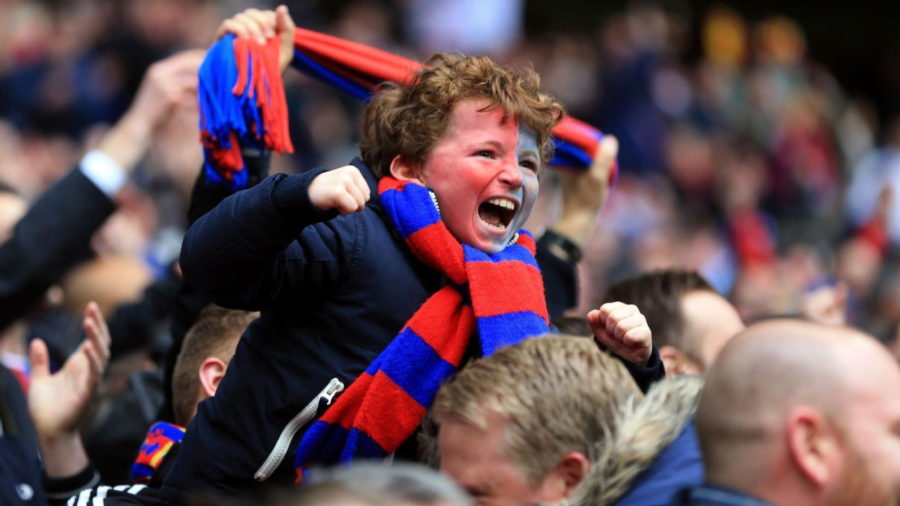 Crystal Palace young fan