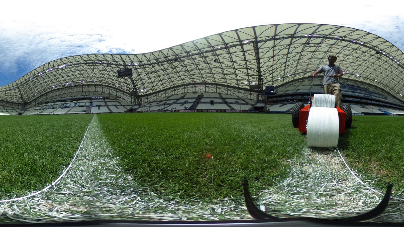 Marseille Stade Velodrome pitch