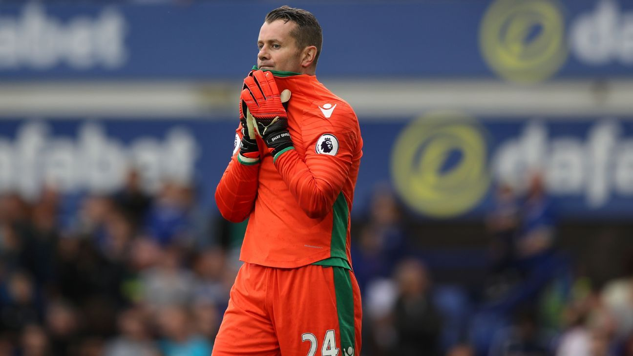 Shay Given's unfortunate own goal handed victory to Everton.