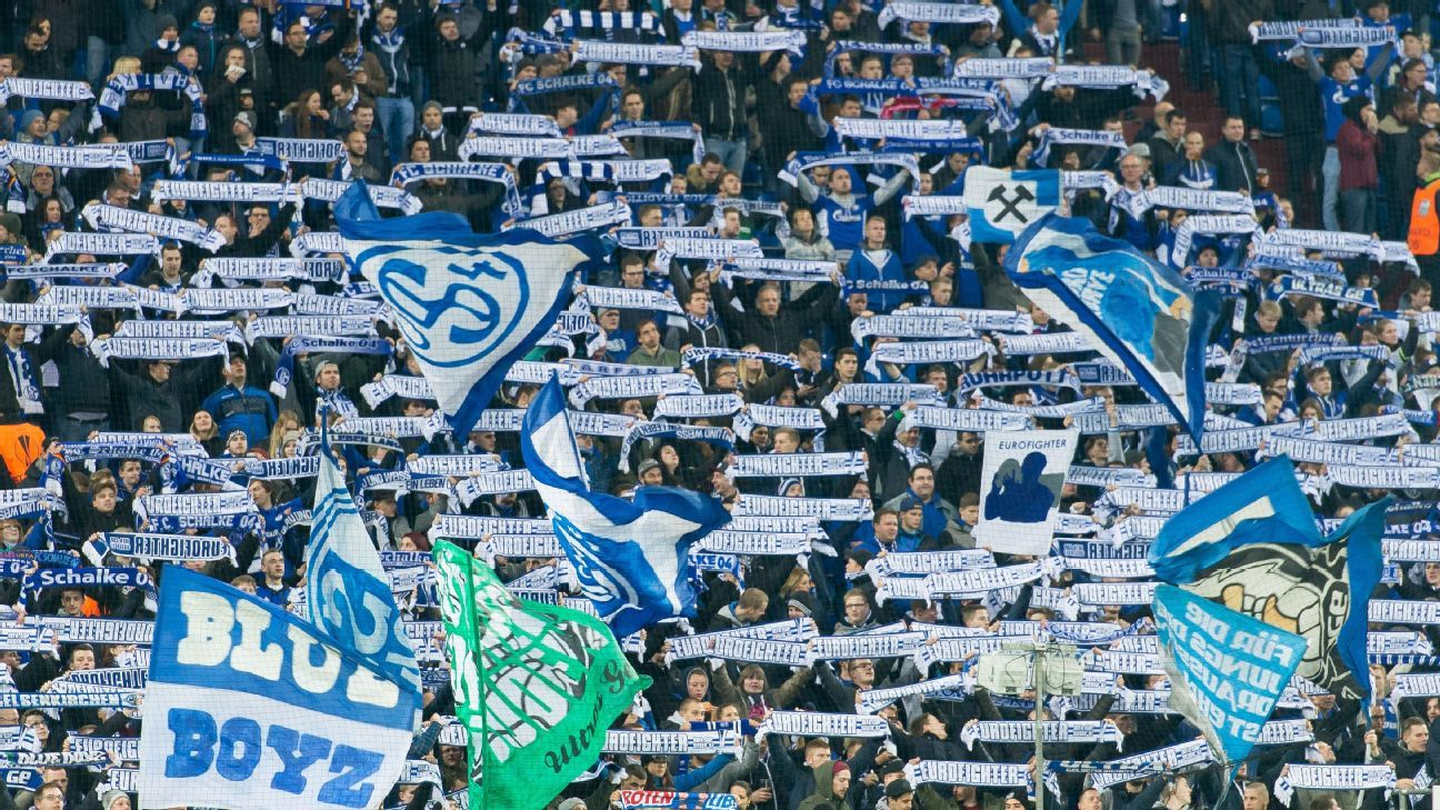 Schalke supporters are the latest Bundesliga fans to plan a protest against RB Leipzig.