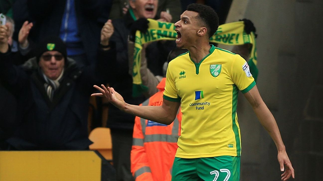 Jacob Murphy celebrates his equaliser for Norwich City.