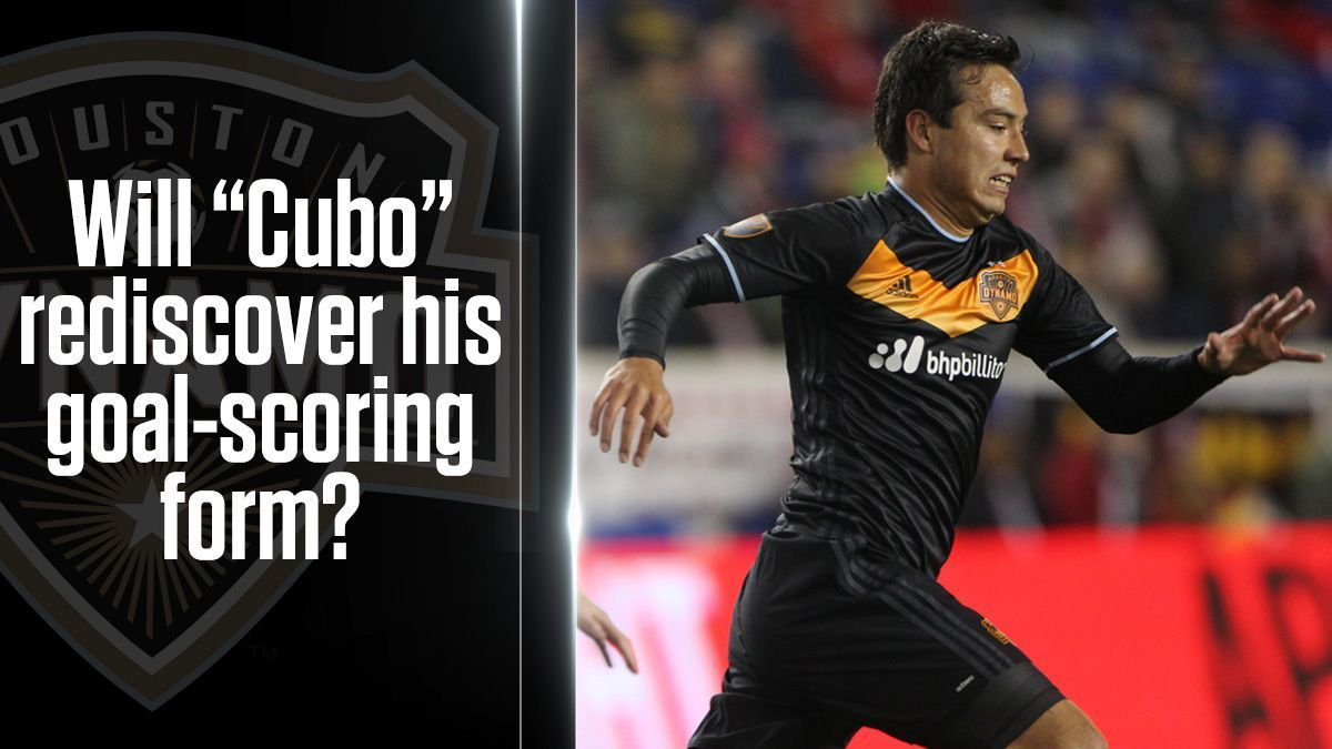 Houston Dynamo 22 Questions