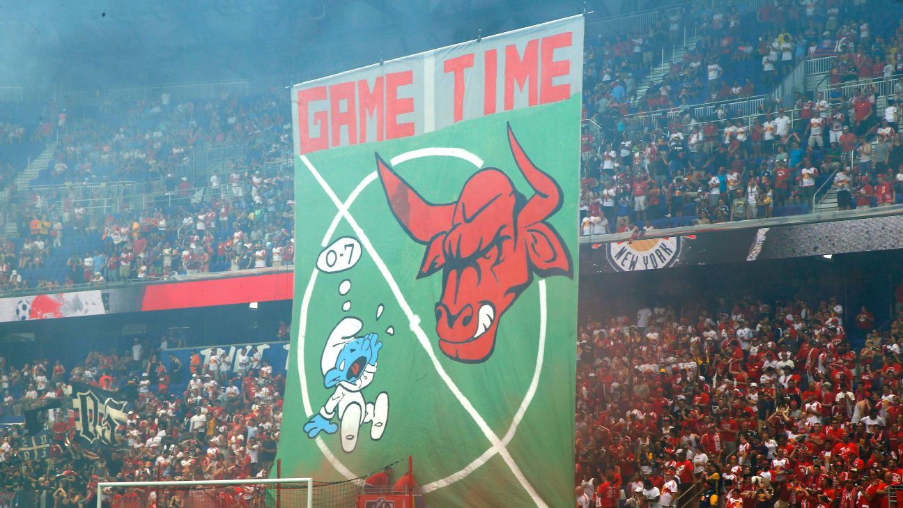 New York Red Bulls tifo