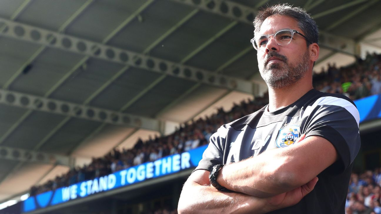 David Wagner and Huddersfield impressively survived Year 1 but could they be in relegation trouble in 2018-19?