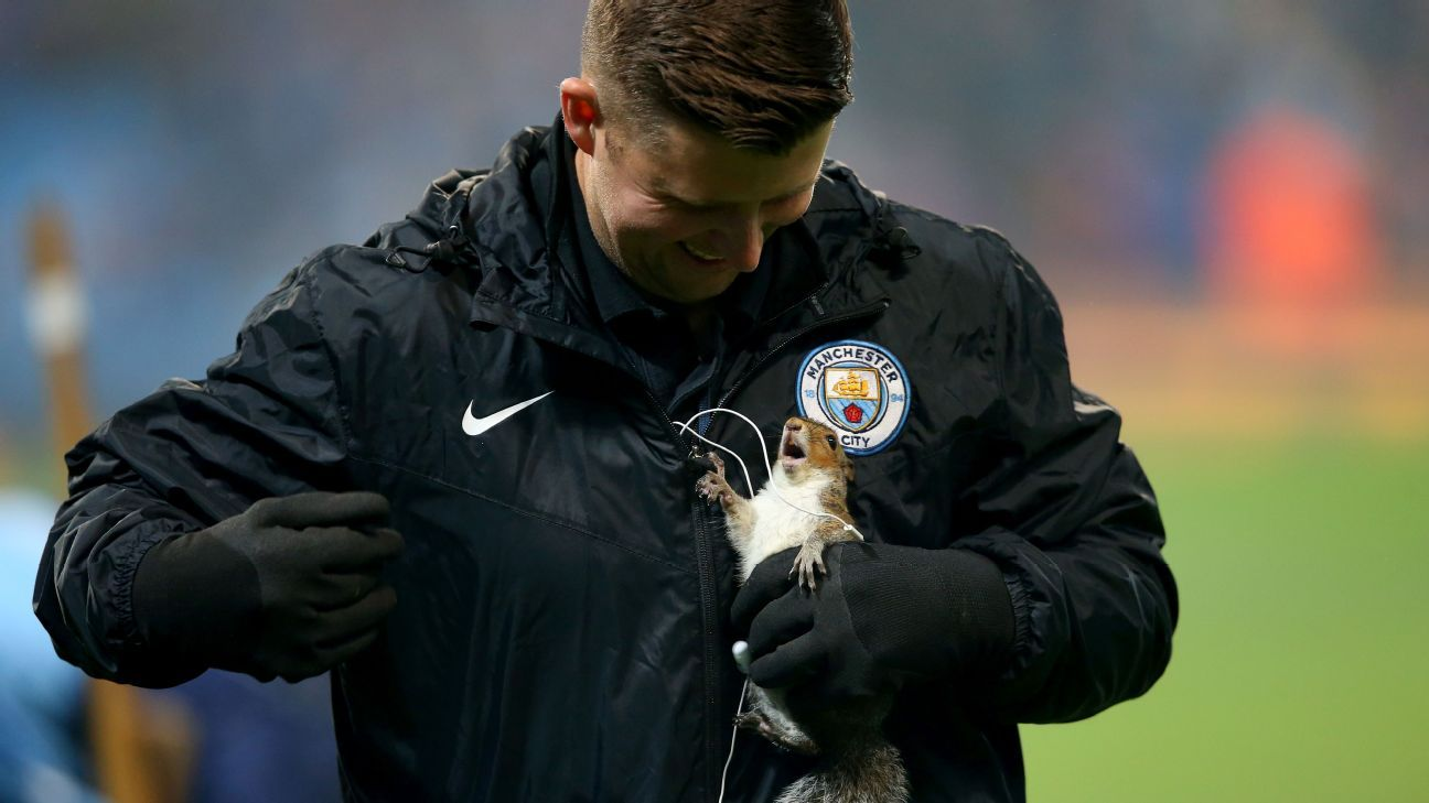 Squirrel pitch invader gives Man City ground staff the runaround