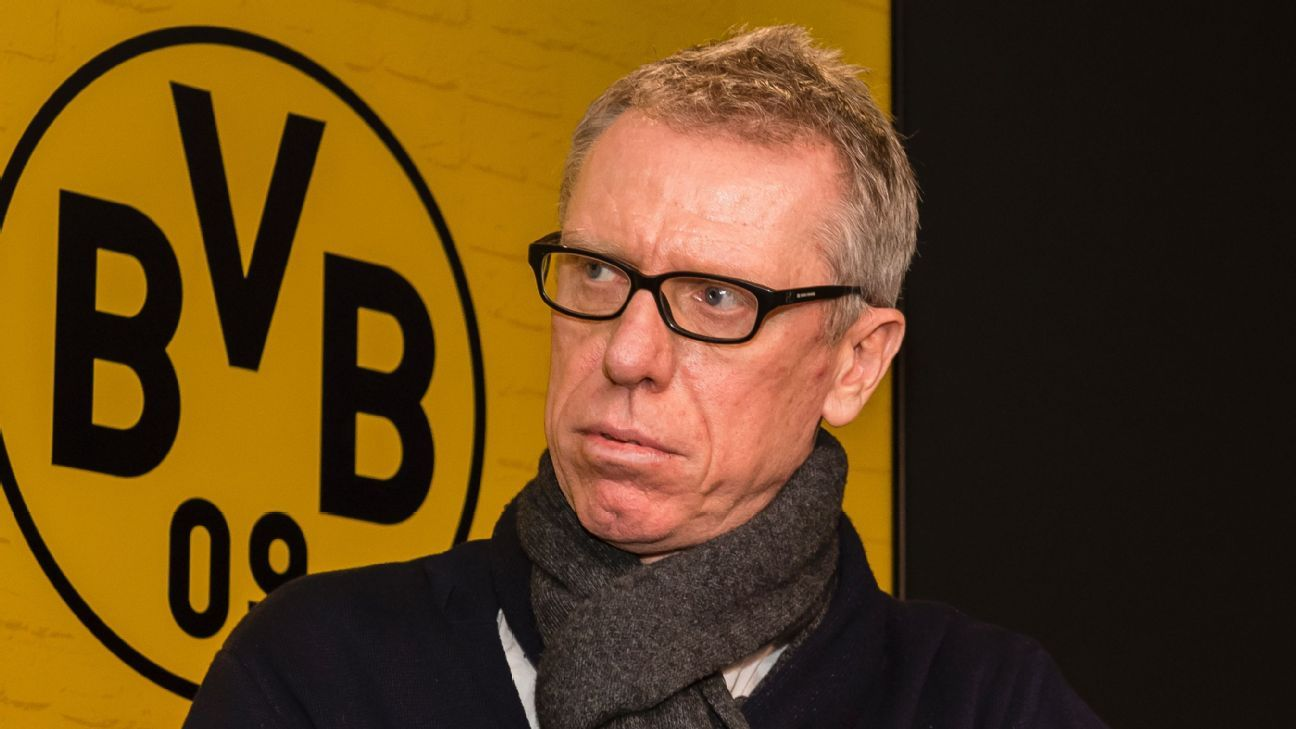 Peter Stoger was a surprising choice by Dortmund but only time will tell if it was the right one.
