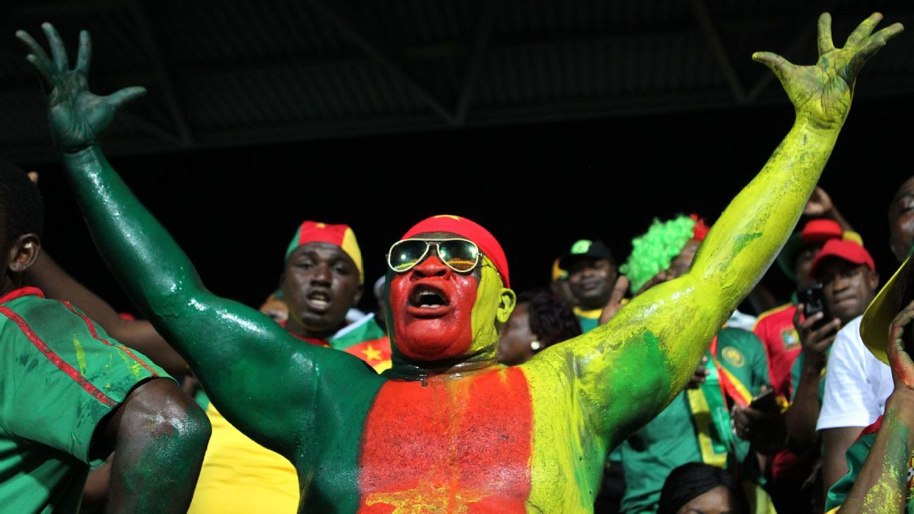 Disgruntled Cameroon fan