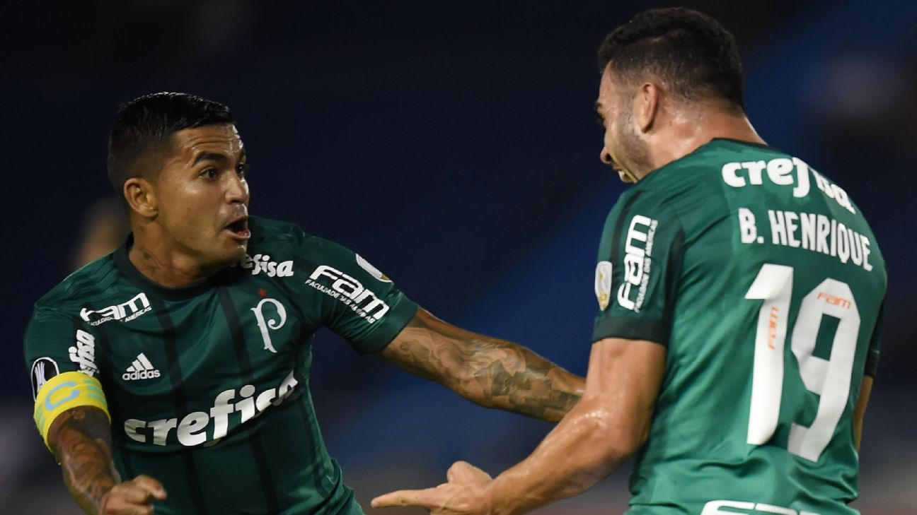 Palmeiras players celebrate after scoring a goal against Atletico Junior in the Copa Libertadores.