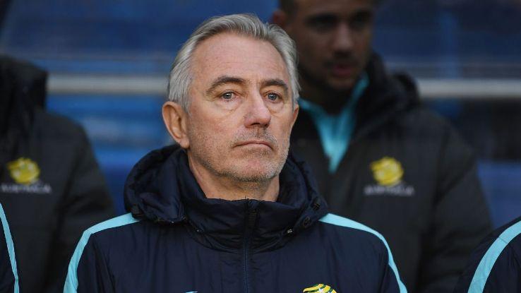 Australia manager Bert van Marwijk looks on.