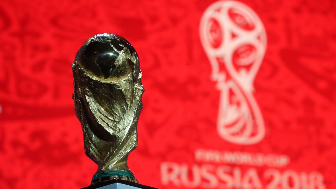 The World Cup winner's trophy