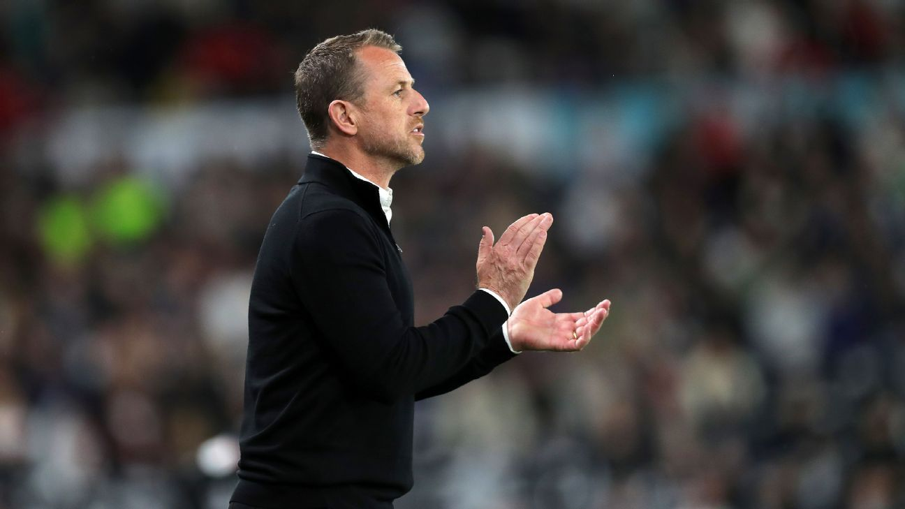 Stoke City announce Gary Rowett as manager after Premier League relegation