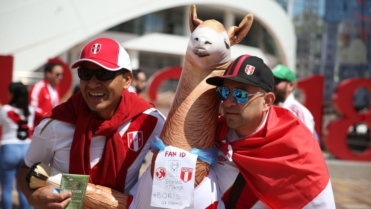 Supporters of the Peruvian men's national football team
