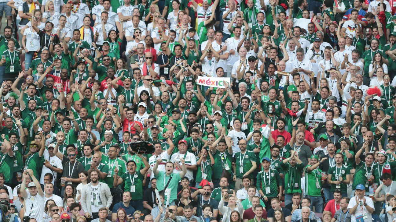 Mexico fans watch their country in action against Germany at the World Cup.