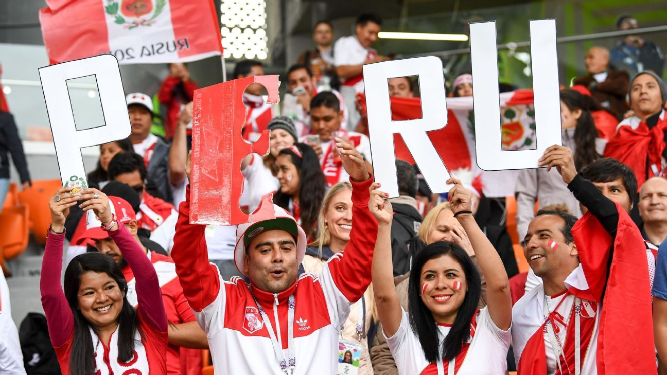 Peru fans cheer during the World Cup game against France.
