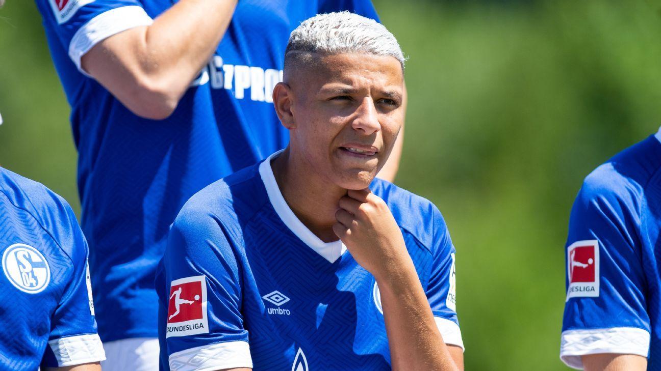Schalke's Amine Harit