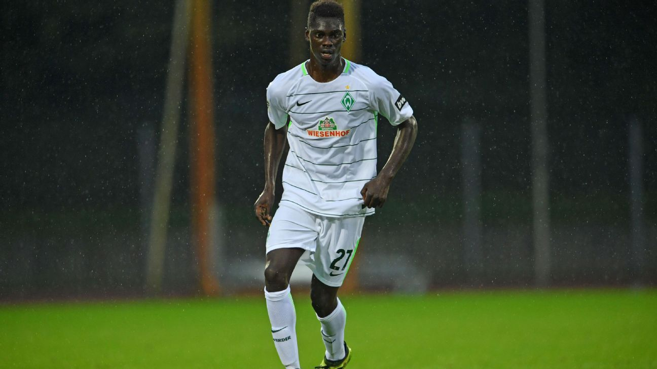 Idrissa Toure has joined Juventus on loan from Werder Bremen.