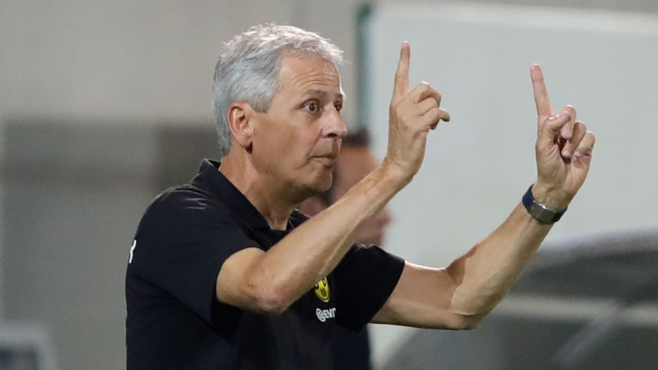 New manager Lucien Favre will bring a very different look to Borussia Dortmund.
