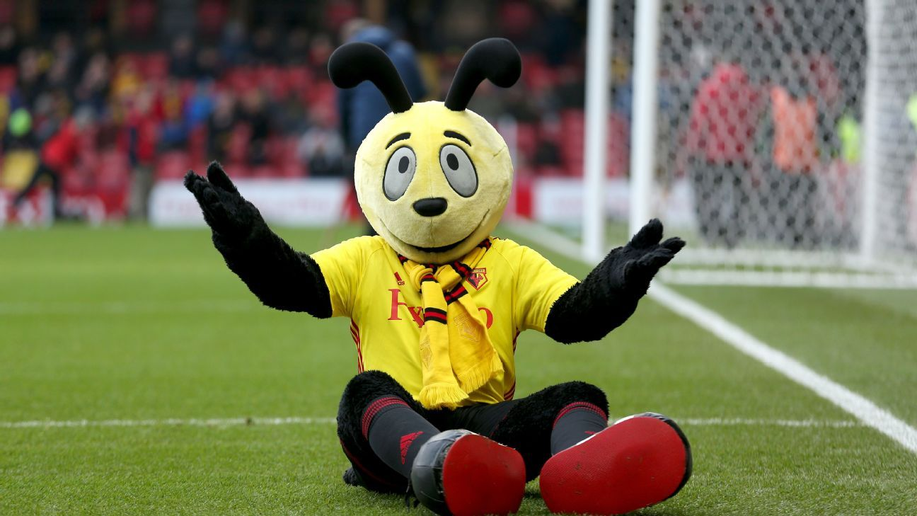 Watford's mascot Harry the Hornet has a history with Crystal Palace star Wilfried Zaha.