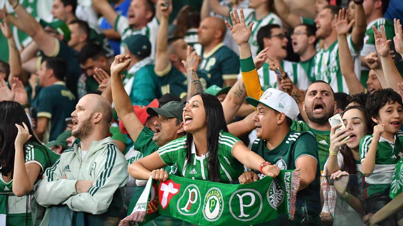 Supporters of Brazilian Palmeiras cheer for their team.