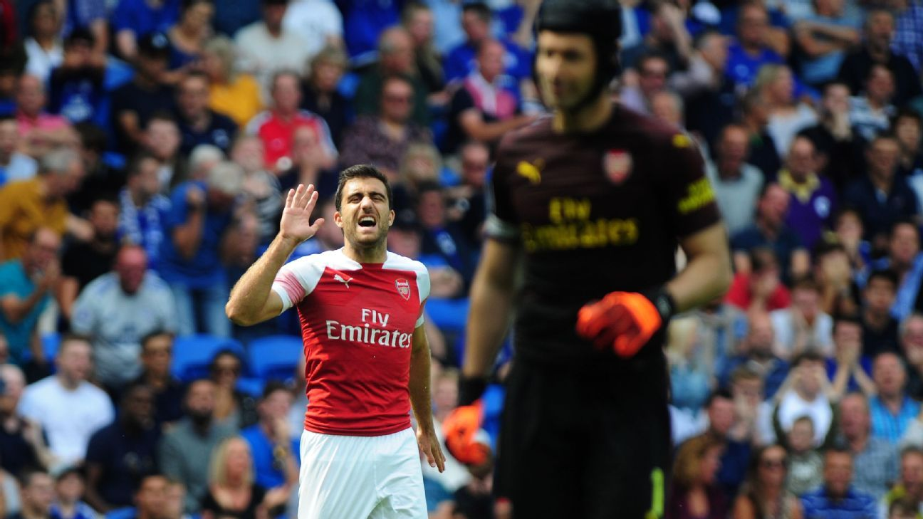 Sokratis Papastathopoulos (left) shouts instructions to Petr Cech.