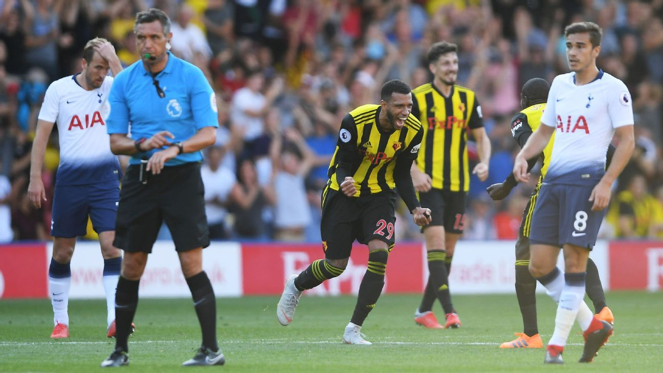 Watford showed impressive resolve to come back from 1-0 down to defeat Tottenham at home.