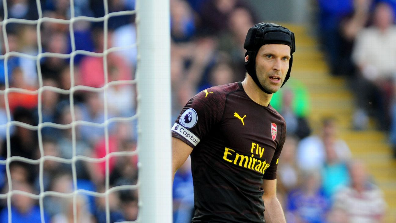 Arsenal's Petr Cech during a Premier League game against Cardiff City.
