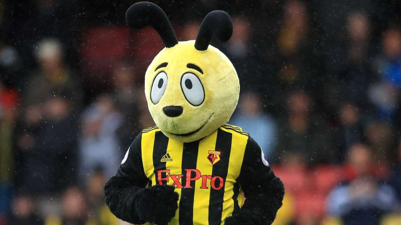 Watford mascot Harry the Hornet caused controversy for taunting Crystal Palace's Wilfried Zaha