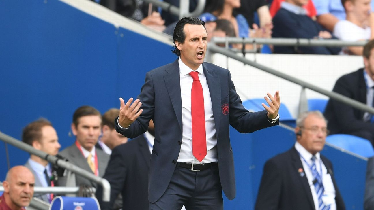 Unai Emery during Arsenal's meeting with Cardiff City.